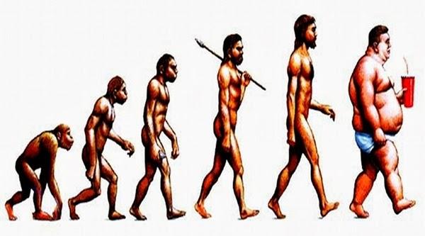 973fa-evolution333new